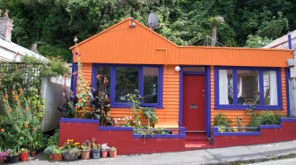 orange purple house_