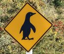 cropped-penguin-sign.jpg